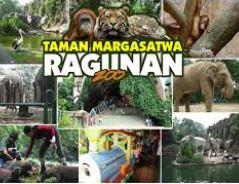 kebun binatang rangunan