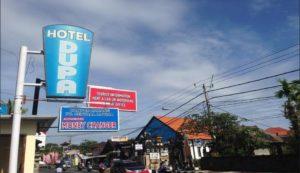 Hotel Dupa Lovina Bali