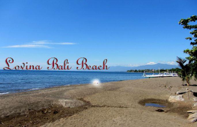 Daftar Hotel Murah dekat Pantai Lovina Bali