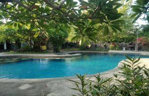 Rini Hotel Lovina Bali