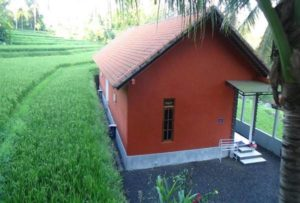Lotus Guesthouse Sudaji