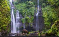 Rekomendasi 11 Hotel Murah Dekat Air Terjun Sekumpul Bali