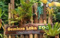 Harga Tiket Masuk Kebun Binatang Gembira Loka Jogja Murah dan Penuh Edukasi