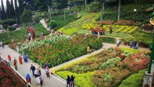 Taman Bunga Selecta