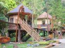Tarif Menginap di Taman Safari Lodge Cisarua Bogor