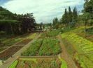 Harga Tiket Masuk Taman Rekreasi Selecta Batu Malang Jawa Timur