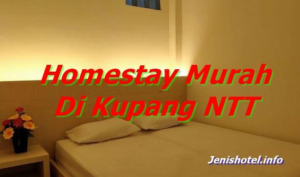 8 Homestay Murah di Kupang NTT yang Bagus